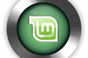 linux mint distro